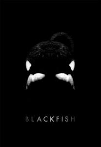 Blackfish_documentary_Tilikum
